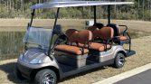 2021 Champagne Gold 6 Passenger Advanced EV Golf Cart